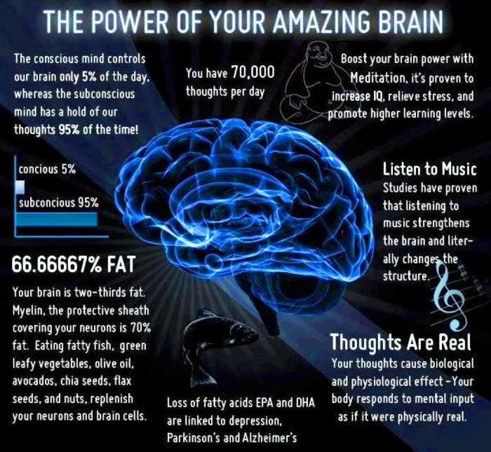 Power of the Brain 1