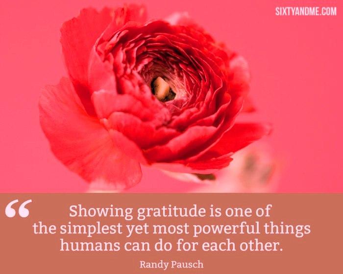 Gratitude 4a
