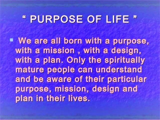 Purpose 1 (2)