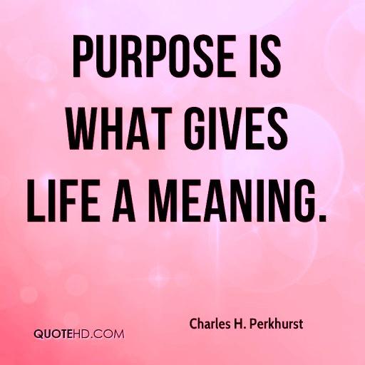 Purpose 4a