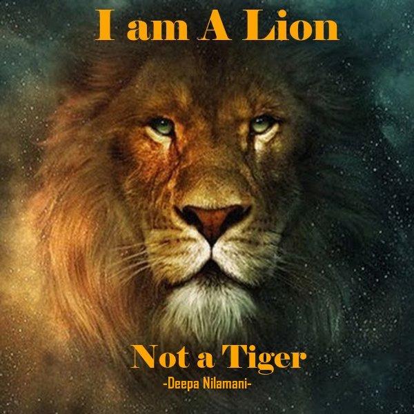 Lion 12a