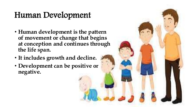 Human Development 1